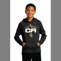 Golden Spikes Dri Fit Heathered Hoodie